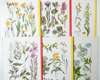 Wildflower Book Pages, Vintage, Paper Ephemera, Craft Supplies, Scrapbooking, Mixed Media PE346