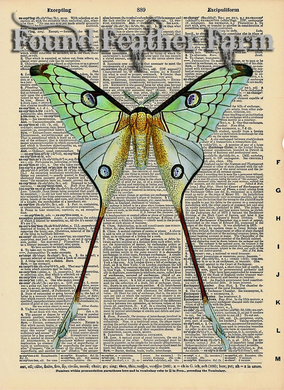 "Vintage Antique Dictionary Page with Antique Print ""Luna Moth"""
