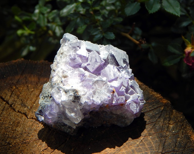 Large CUBIC FLUORITE - frosted grape fluorite on matrix self standing 121g - Reiki Wicca Pagan Geology gemstone specimen