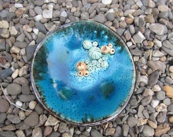 Coral Dish-2