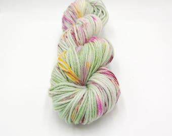 Merino Worsted Hand Dyed Yarn - Sachet