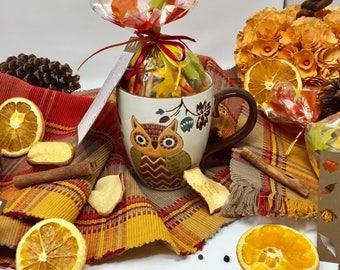 Potpourri, Stove Top Potpourri, Thanksgiving gift, Fall Gift, Fall Potpourri, Owl Gift, Owl coffee mug, Thanksgiving decor, Thanksgiving