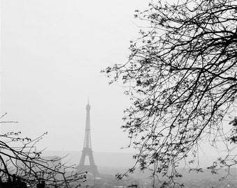 Paris Photograph, Paris Photography, Love Birds, Paris Wall Art, Paris Decor, Valentine's Day Gift, Girlfriend gift, Eiffel Tower Photo