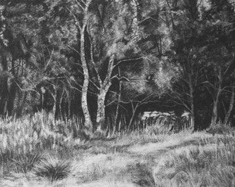 Outney Common, Bungay, Limited Edition, Fine Art, Giclee Print