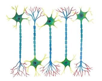 Neuron 5, neurons, science art, science print, watercolor art, watercolor print, neurology, neuroscience, neuron art, neuron print, biology