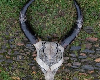 Hoorns koe kunst aan de muur etsy for Schedel hoorns