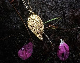 Gold Foil Leaf