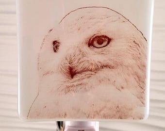 Snow Owl Night Light Fused Glass