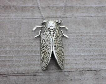 Silver singing cicada necklace