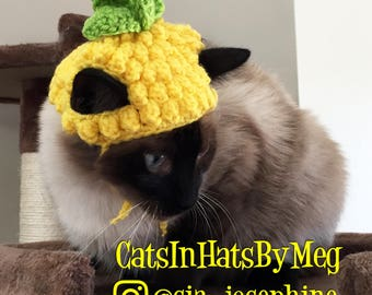 Handmade Crochet Pineapple Hat for Cats