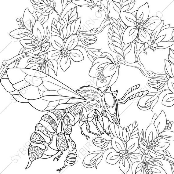 Bee. Honeybee. 3 Coloring Pages. Animal coloring book pages