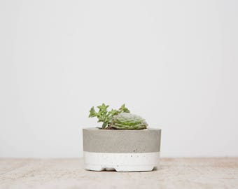 Mother's Day Gift for Her, Small Concrete Planter, White