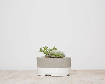 Small Concrete Planter, White