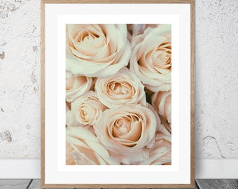 Beautiful rose print, Pastel wall decor, Girls bedroom decor, Romantic art, Digital Download, rose photo, Valentine's Day, Cream wall art,