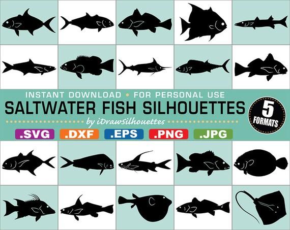 65 Saltwater Fish Clip Art Images 5 Formats Svg Dxf Jpg
