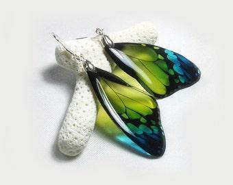 Butterfly Wing Earrings - Transparent Clear Glass-like Earrings - 925 Silver- Summer Dangle Green Gradient