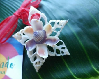 Seashell ornament - Beach tree - Sanibel ornament - Chrostmas ornament - Custom seashell ornament - Mini seashells - Star ornament