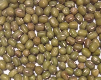 Mung Beans for Sprouts