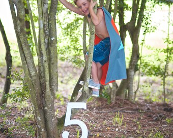5th Birthday Photo Prop - 15 inch Wooden Number Five - Birthday Number 5