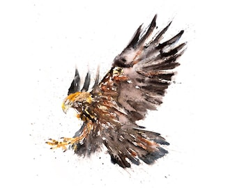 American Golden Eagle - Signed limited edition prints of my original watercolour painting.