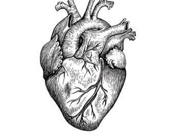Heart of Gold - Fine Art Digital Giclee Print