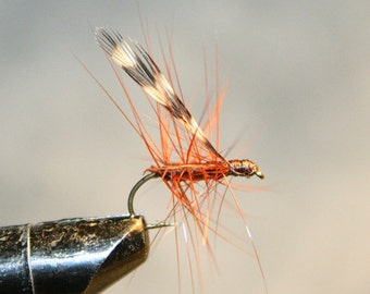 Fly Fishing Flies - Michigan Fisherman - Brown with Brown Hackle - Made in Michigan Fishing Fly - Grizzly Hackle Wing - Number 10 Hook