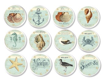 Soft Blue Green & White Beach House Coastal Drawer Pull - Beachy Bathroom Cabinet Knob - Nautical Decor, Seashell, Seahorse, Anchor - 317H25