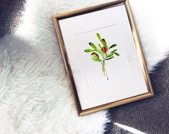 Winter Flower Series Watercolor Poster Art Print