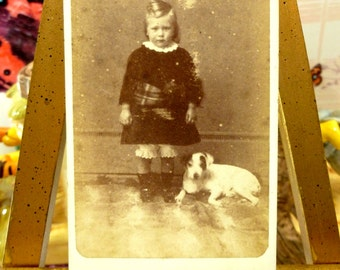Rare Victorian Photograph of Jack Russell Dog Little Girl with Tartan Sash Antique Carte De Visite CDV 1800s