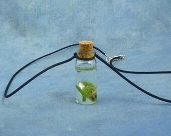 Frog Specimen Jar Necklace  - Handmade Biology Inspired Jewelry