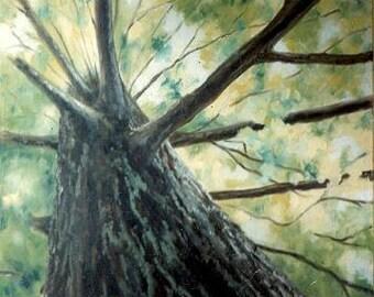 Oil Painting Print, Original Art Print, Tree Painting Print, Looking Up Print, Peaceful Painting, Peaceful Thought, Making Memories, Artwork