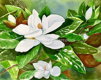 Magnolia, southern flowers, white, green, trees, wall art
