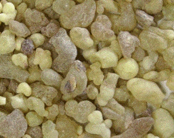 Frankincense Tears (Wild Harvested) From Ethiopia
