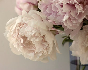 Pastel Peony Photograph, Flower Photography, Romantic Floral Art Print, Cottage Chic, Peony Print