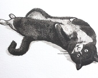 Cat Artwork Homedecor - Engraving - Artwork - Original Print