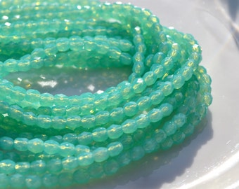 Aqua Milky Green 4mm Faceted Fire Polish Round Beads  50
