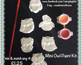 Owl paint kit