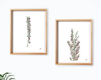 flowers art Set of 2, prints set of watercolor, artwork, wall art print, purple and pink flowers, spring art, home decor,Illustration,