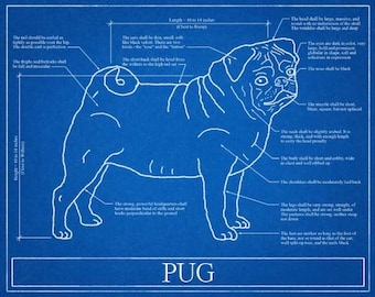 Pug Blueprint Elevation / Pug Art / Pug Wall Art / Pug Gift / Pug Print