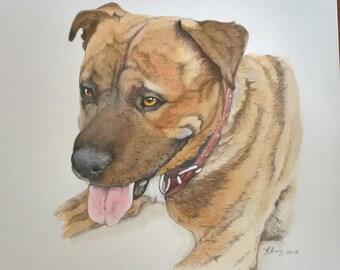 Custom Painted Pet Portrait, A4 pet portrait