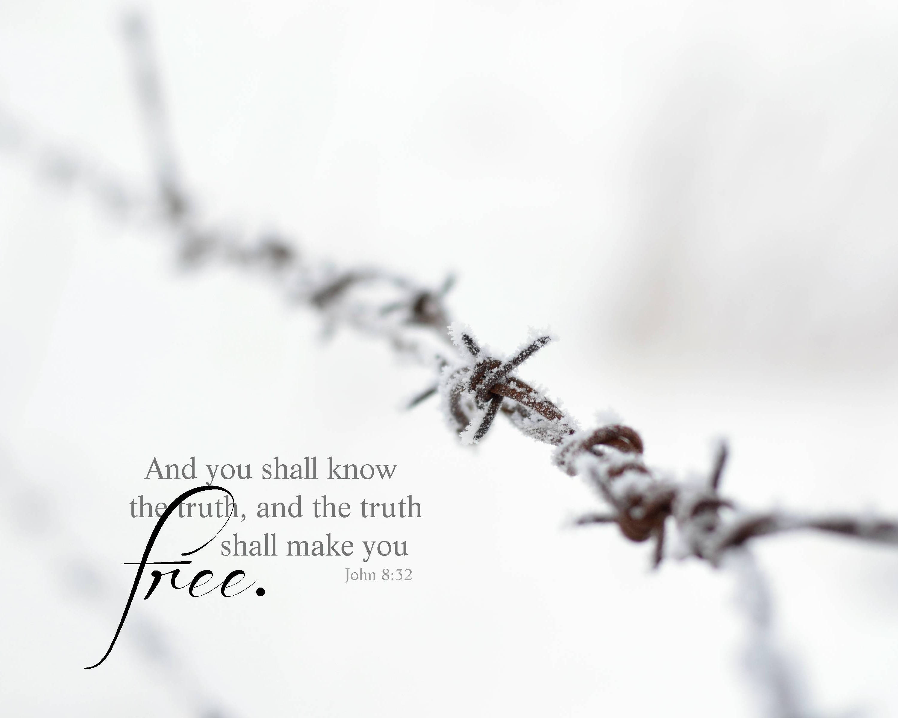 Bible Verse Wall Art Truth Shall Make You Free Scripture
