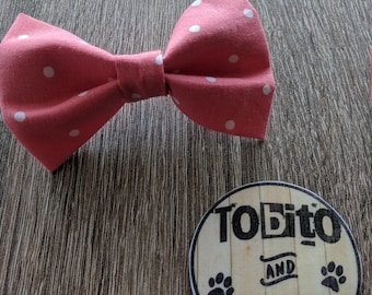 Summer//Pastels//Coral dots// dog bow tie//made to order