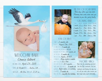 """Stork's Arrival Design Baby's First Year Memory """"Book"""""""