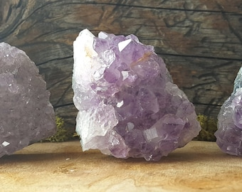 Small Amethyst Crystal Cluster  - Perfect for Healing Grids and Terrariums 497