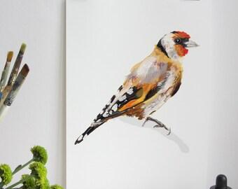 Bird Print, Goldfinch Nature Art, Illustration Bird Print, Bird Art Print, Nature Print, Bird Print, Wall Print, Wildlife, Wildlife Print