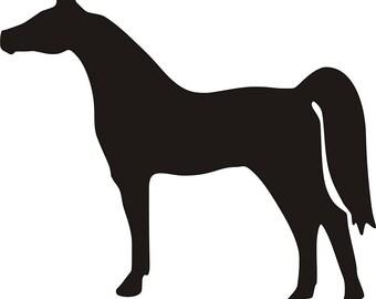 Equine Silhouette   Arabian horse