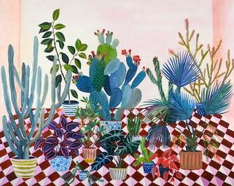 cactus backyard