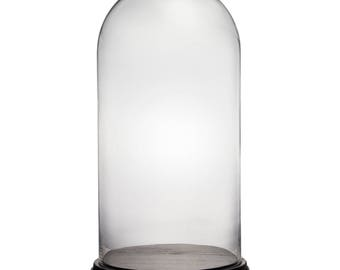 "CYS Glass Cloche Dome with Black Wood Base. H-16"", Cloche Opening-9.75"" -GDO103-WB001/09BK"