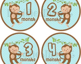 Monthly Baby Boy Stickers Baby Month Stickers, Monthly Bodysuit Sticker, Monthly Stickers Monkeys (Kyler)