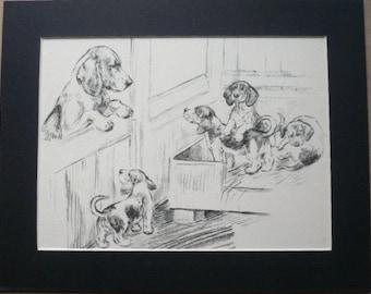 BEAGLE HOUND PUP Vintage K F Barker 1937 bloodhound mounted dog plate print Unique gift Christmas, Birthday, Thanksgiving, Working hound dog